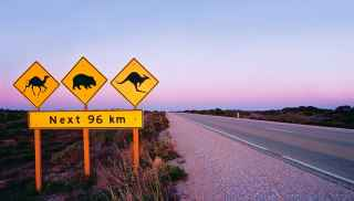 Road signs in the outback